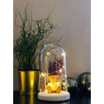 Bear and Flower Figured Bell Glass Lamp
