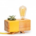 Picta Mimosa Table Lamp with Cactus