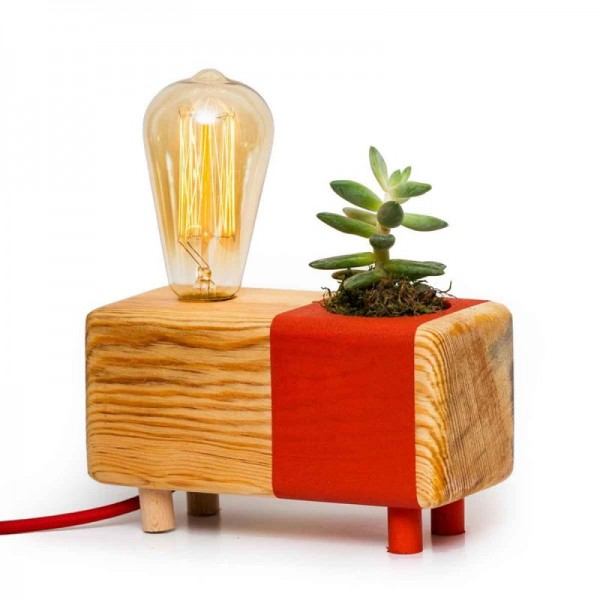 Picta Pomegranate Flower Table Lamp with Cactus