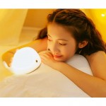 Baby Room Whale Lamp